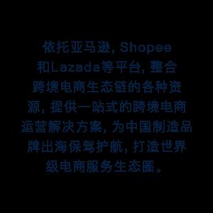 跨境(jing)電(dian)商營銷